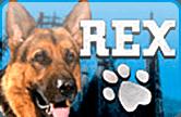 Бесплатный игровой автоматический прибор Rex