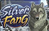Игровой установка Silver Fang