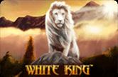 Игровой робот White King на Вулкан 04 онлайн – играйте сейчас!